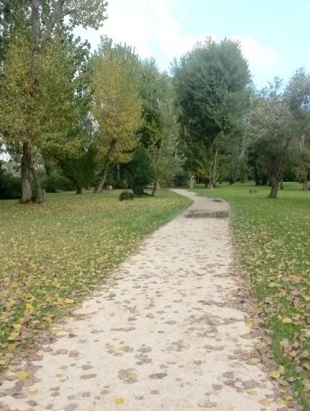 Parco Marecchia rimini