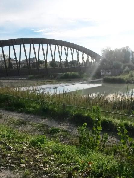 Ponte di legno rimini
