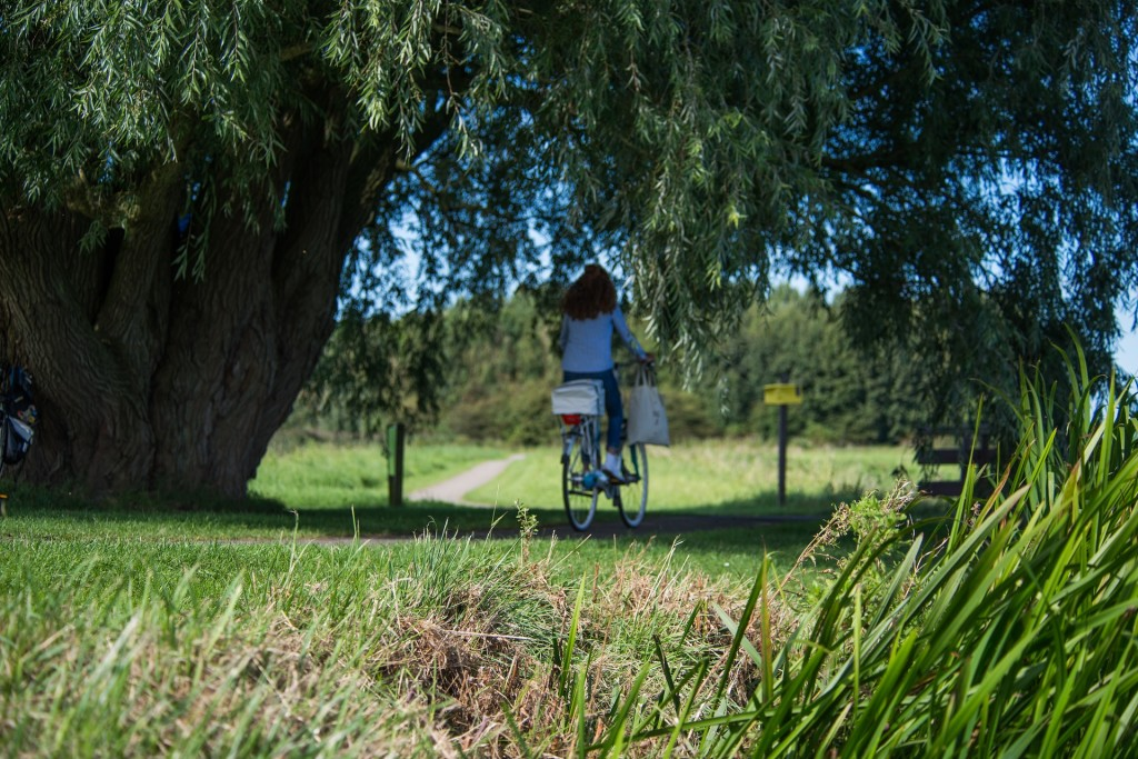 mamma-bici-bicicletta-bikeblog-pedalo-cargobike-bikeblog-rimini