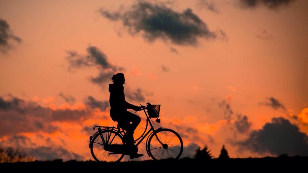 mamma-bici