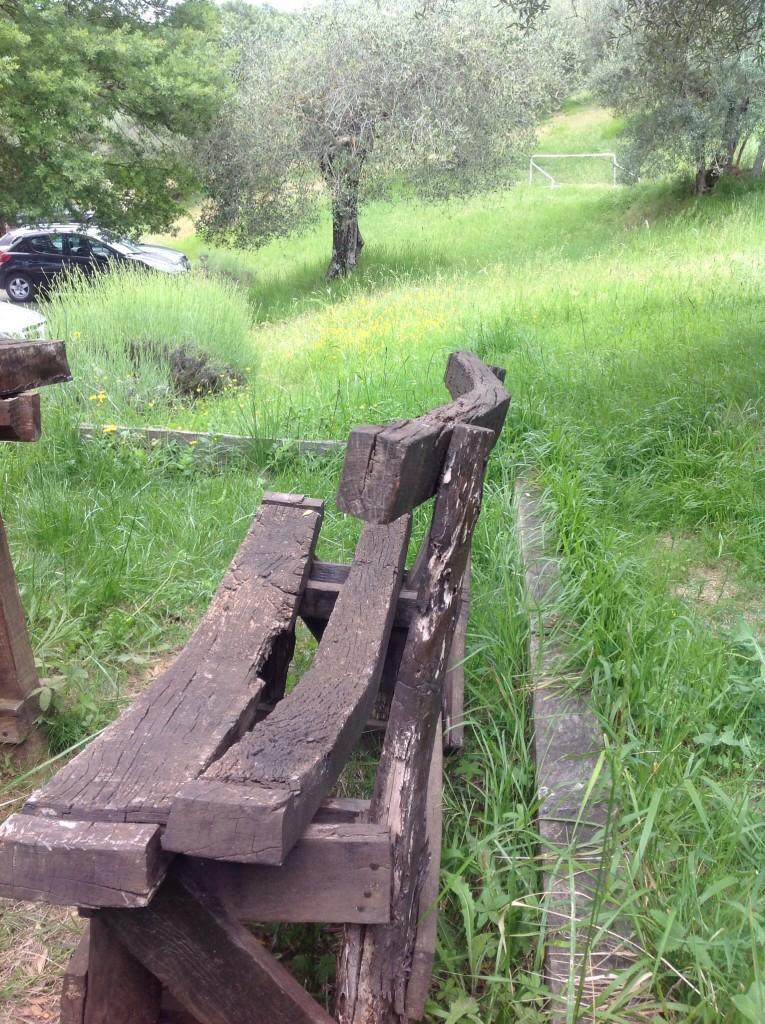 Cantico-umbria-Perugia-magione-agriturismo