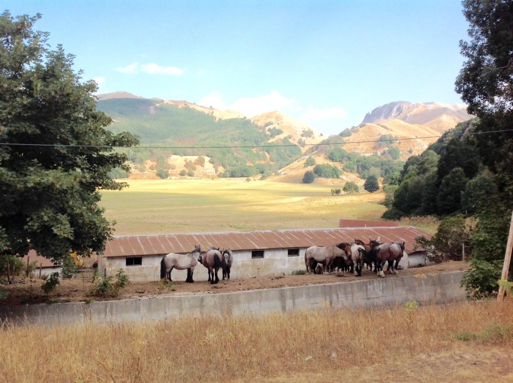 Campitello-Matese-montagna-blog