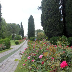 """La """"rosamania"""" di maggio al Parco Sigurtà"""