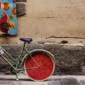 La ciclabile del Marecchia in agosto… alternativa alla Riviera di Rimini